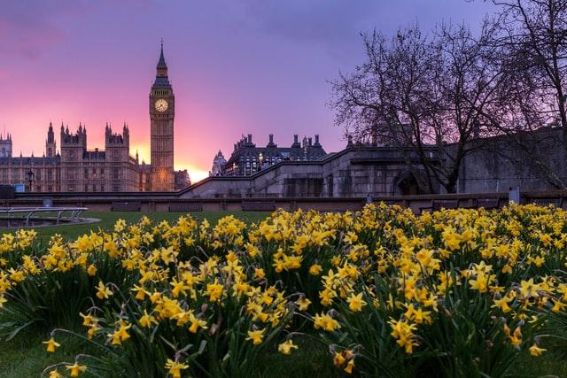 Reino Unido.Autonomos1